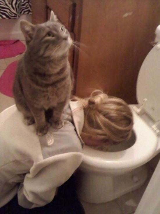 funny_animals_18