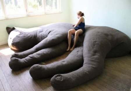 a98800_couch_1-stuffed-cat
