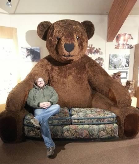 a98800_couch_6-teddy-bear