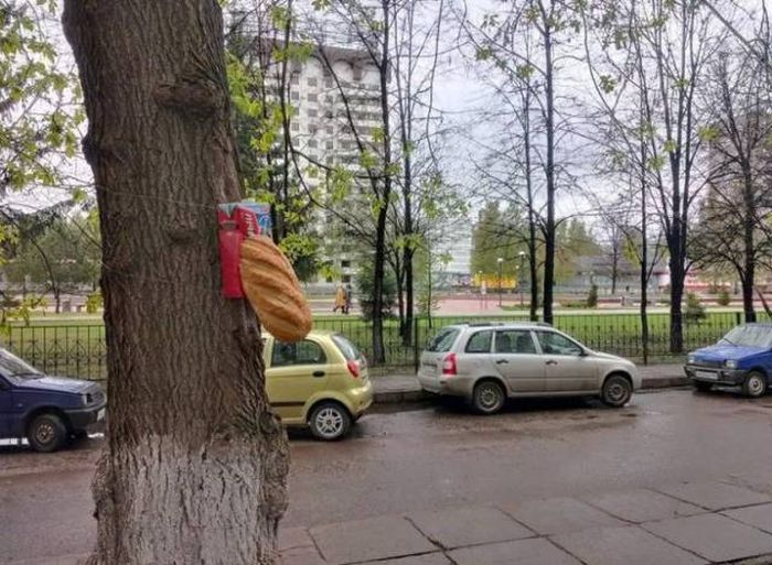 russia_the_motherland_of_wtf_10