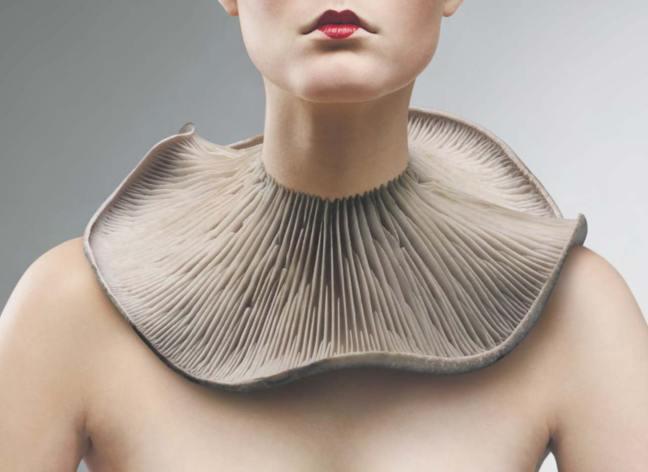 weird-jewellery-1-mushrooms