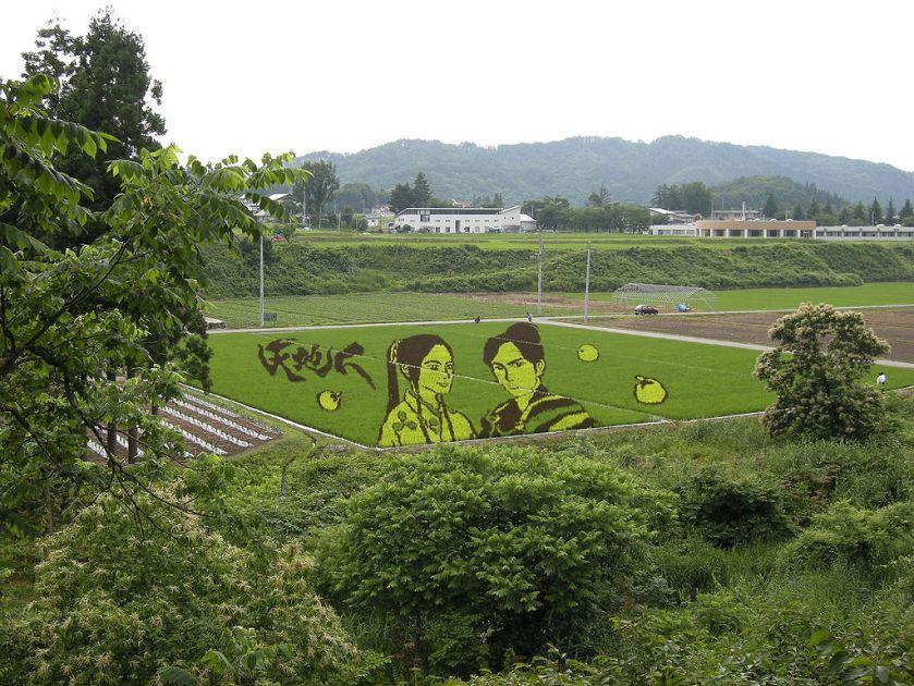 1024px-Tambo_art_in_Yonezawa,_Yamagata