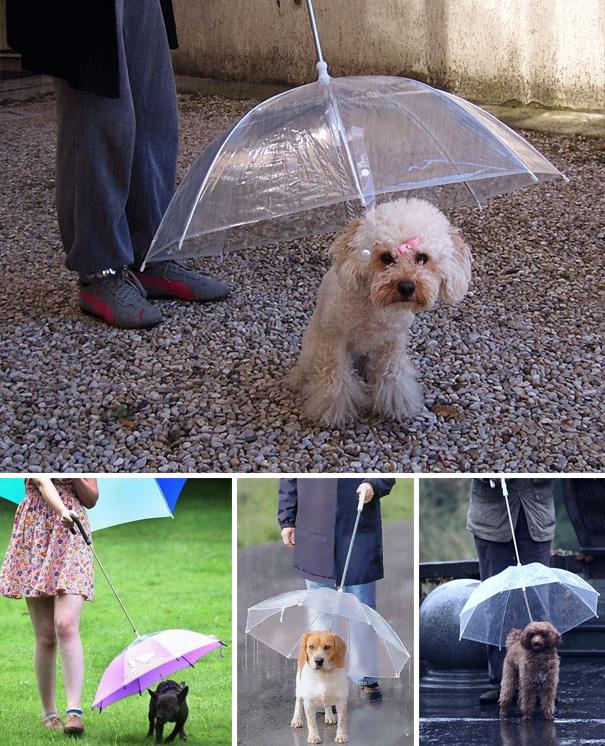 creative-umbrellas-2-20