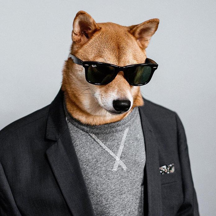 030117-menswear-dog-lead