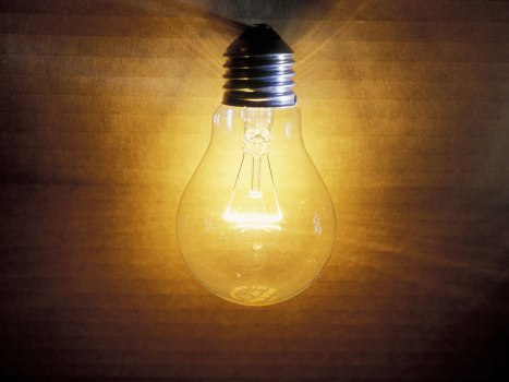 15-light-bulb-rex