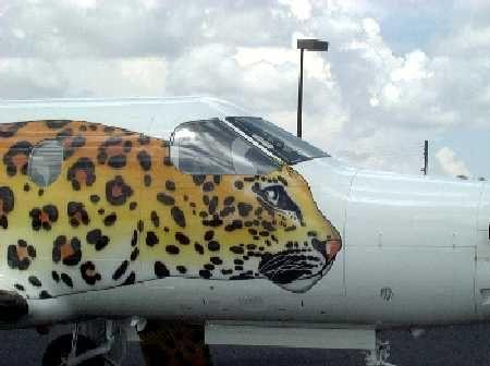 bef7768118162575c8e41076e10b25b7--airplane-paint-schemes
