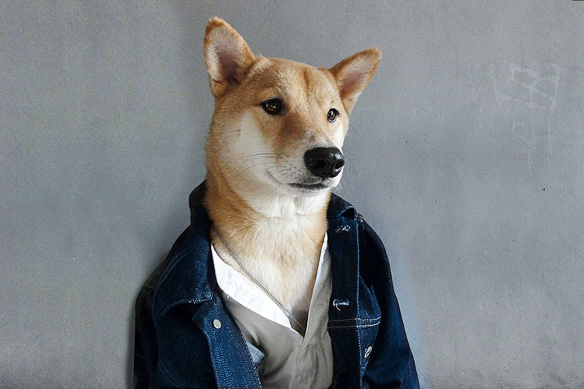 mensweardog_00