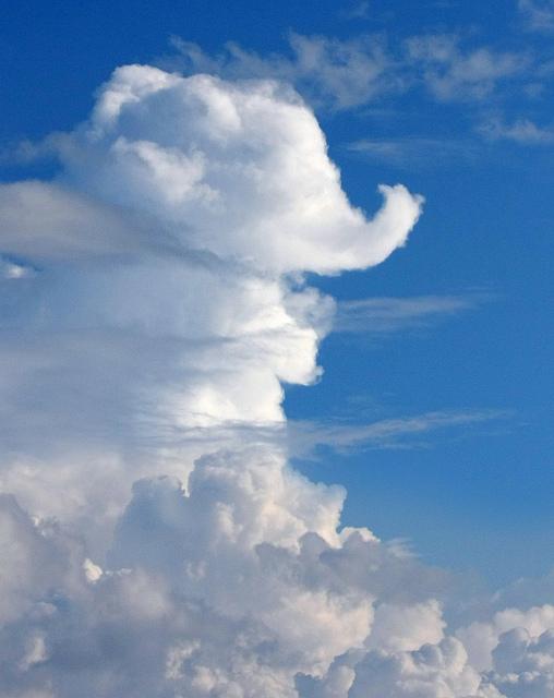 elephantcloud