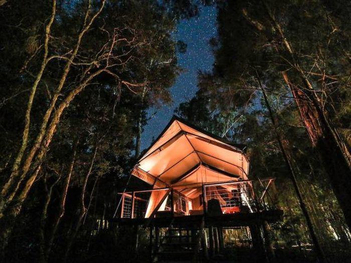 treehouses_07