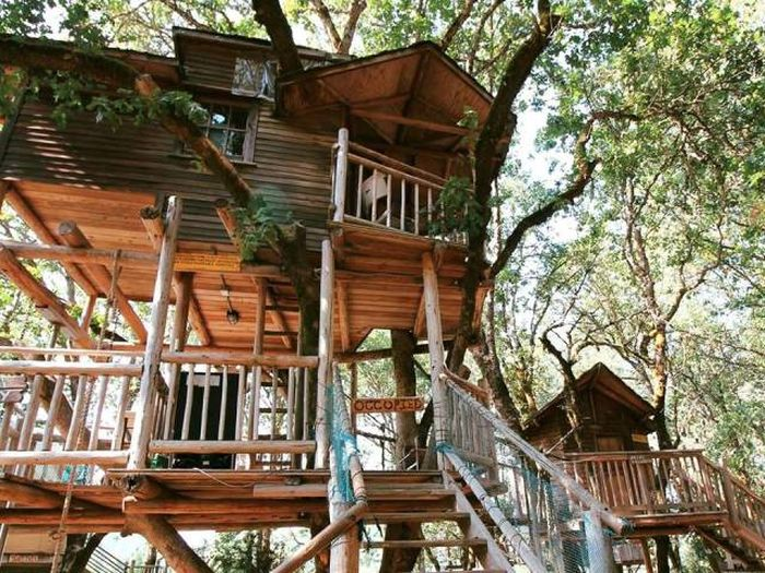 treehouses_20