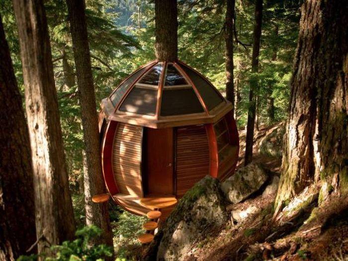 treehouses_25