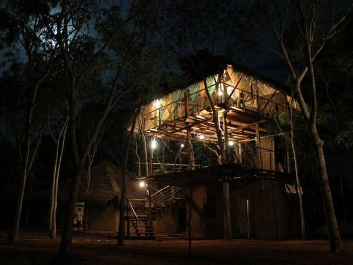 treehouses_28