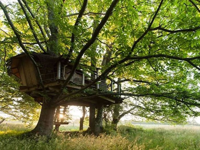 treehouses_31