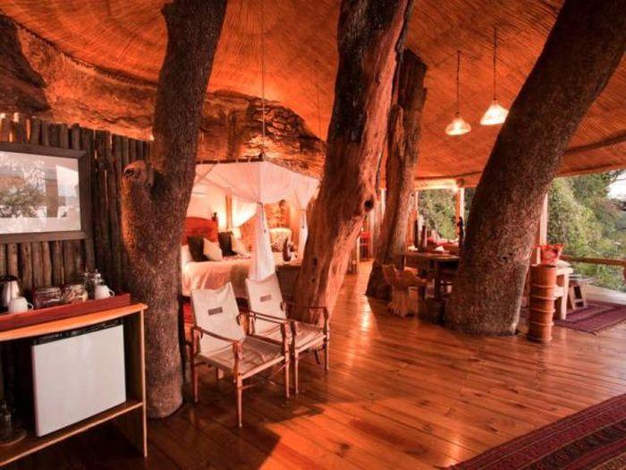 treehouses_32