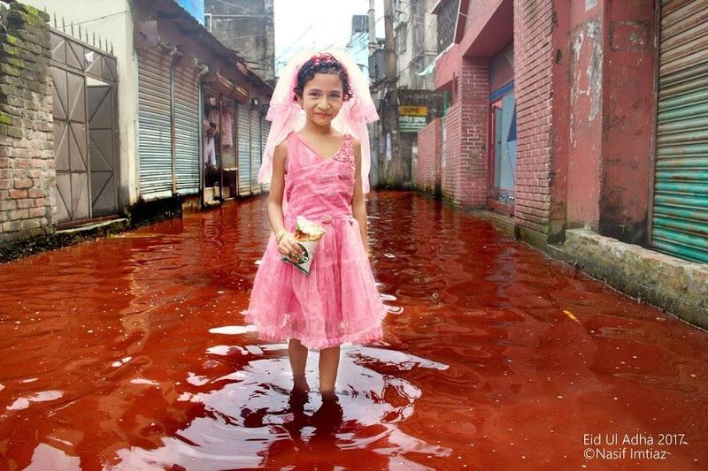 rivers-of-blood-eid-dhaka-26