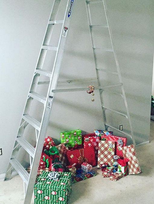 brad din scari (10)
