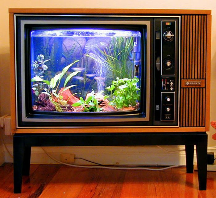 creative_aquariums_01