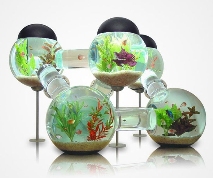 creative_aquariums_11