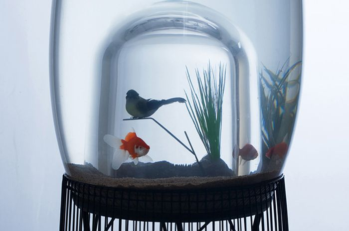 creative_aquariums_12
