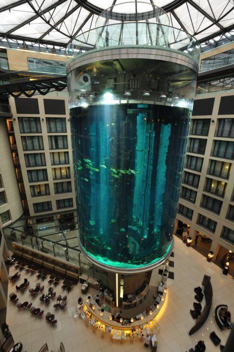 creative_aquariums_14