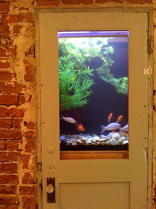 creative_aquariums_20