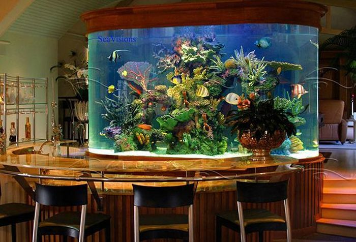 creative_aquariums_23