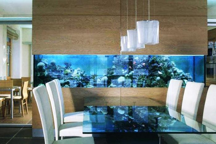 creative_aquariums_25