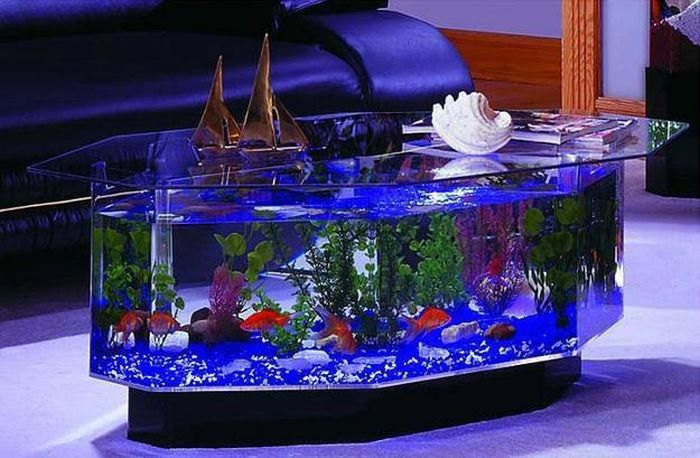 creative_aquariums_26