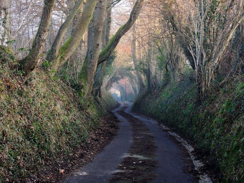 sunken-lane-72