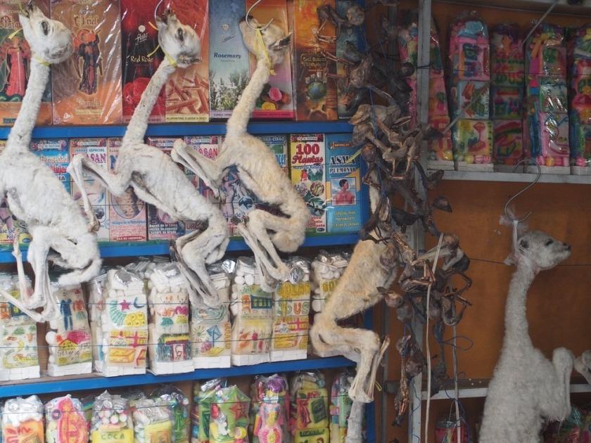 Piata Vrajitoarelor din Bolivia (7)