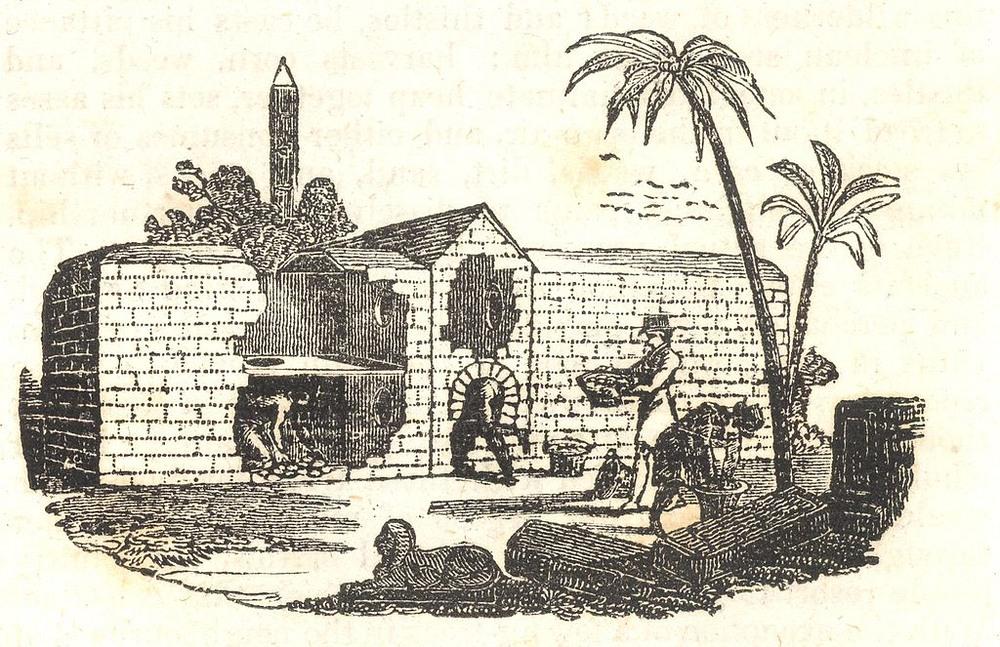 Vechiile incubatoare din Egipt